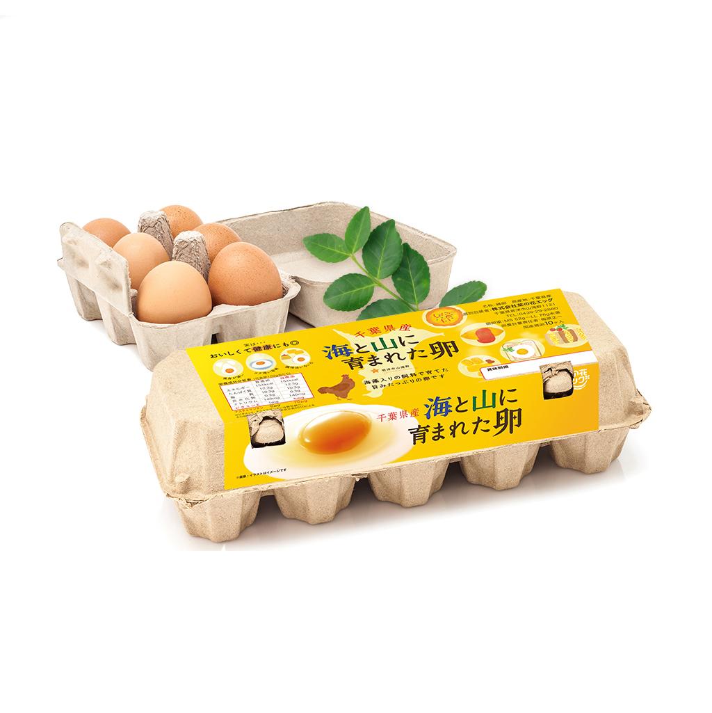 高級卵パッケージデザイン